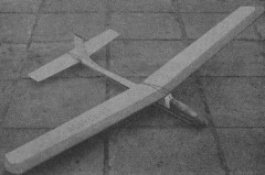 Polysterix model airplane plan