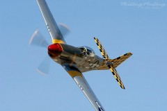 North American P-51 Mustang model airplane plan