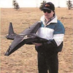 Stealth E model airplane plan