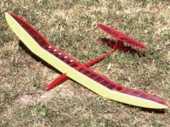 Sunbird model airplane plan