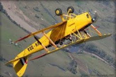 Tiger Moth 48in elec model airplane plan
