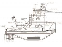 CD WILSON model airplane plan