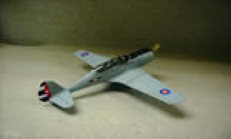 CW-19R, Cuba 1942 model airplane plan