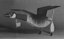 Canada Goose model airplane plan
