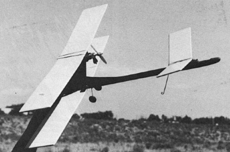 Canard Bipe model airplane plan