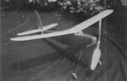Commercial model airplane plan