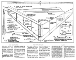 Flaming Ptero model airplane plan