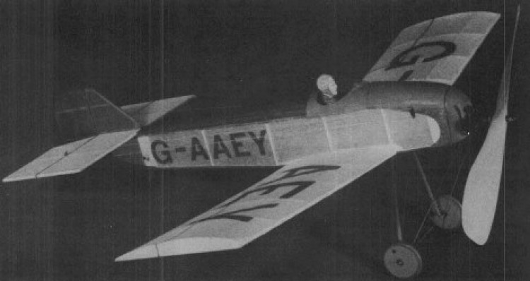 Gadfly 1979 model airplane plan