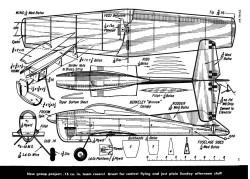 Honeybug model airplane plan