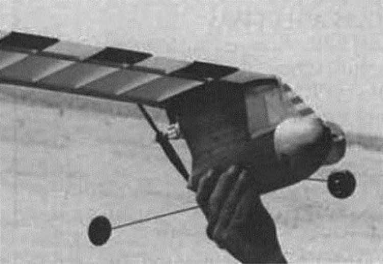 Lil Misery model airplane plan