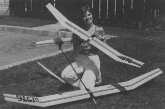 Offspring model airplane plan
