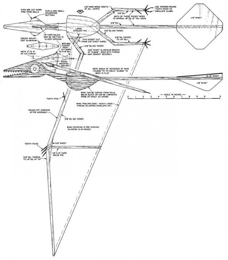 Peter O' Dactyl model airplane plan