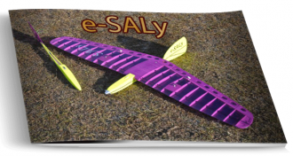e-SALy model airplane plan