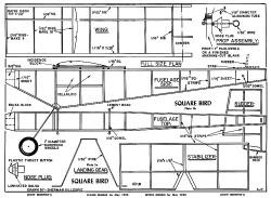 Square Bird plan model airplane plan