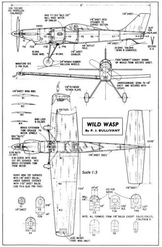 Wild Wasp model airplane plan