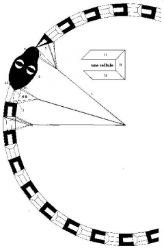 serpen1 model airplane plan