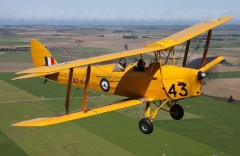 D.H 82A Tiger Moth model airplane plan
