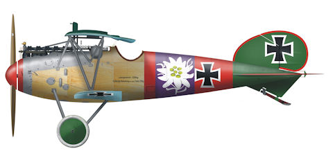 data/extra_images/2016/Albatros1_Wiki.jpg