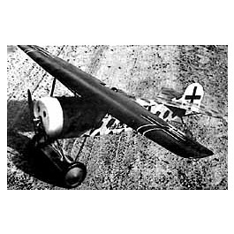 data/extra_images/2016/Musciano_RC_Fokker_D-VIII_001.jpg