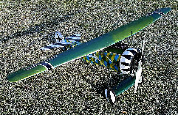 data/extra_images/2016/Musciano_RC_Fokker_D-VIII_002.jpg