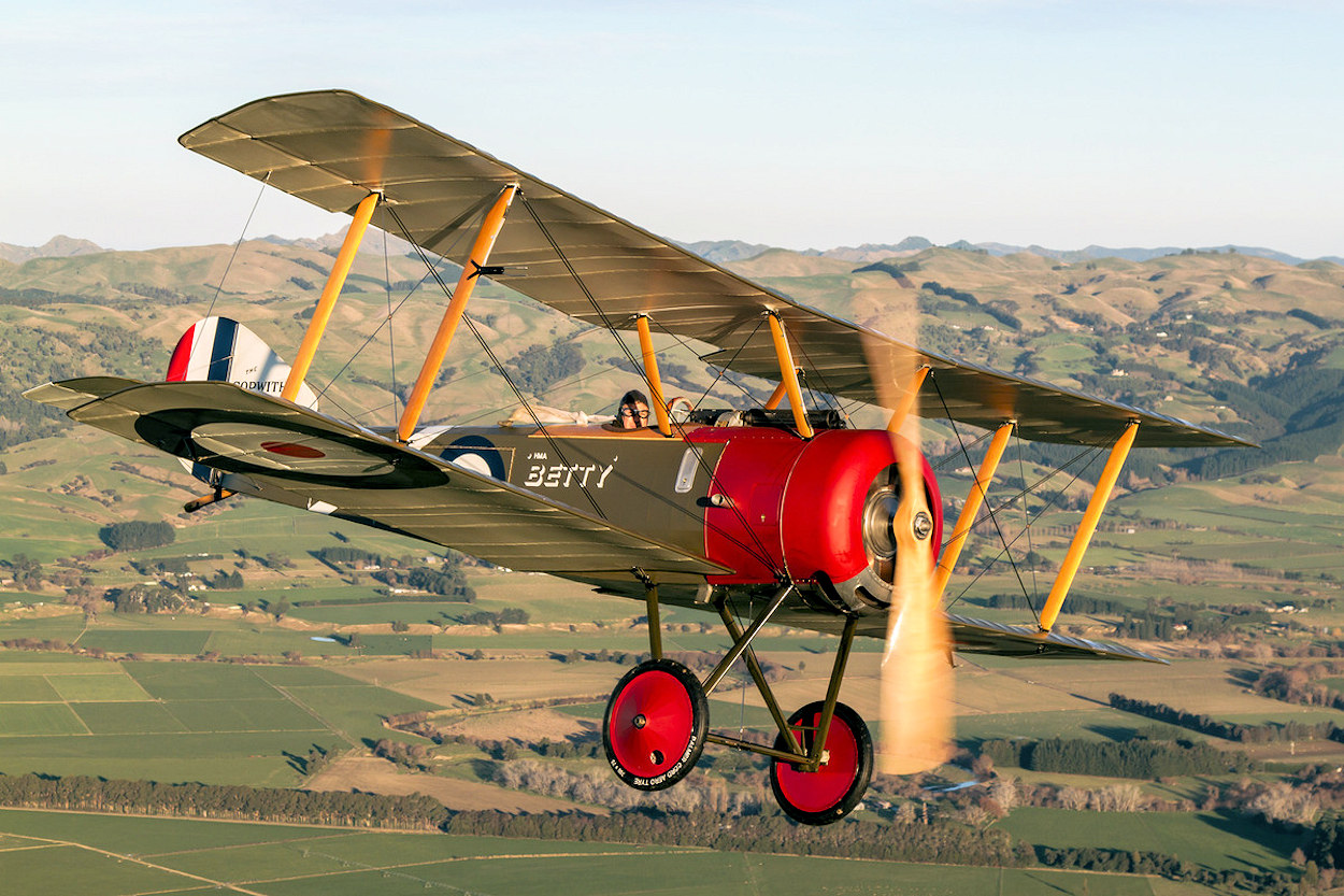 data/extra_images/2016/Sopwith_Pup_-_pup_8811.jpg