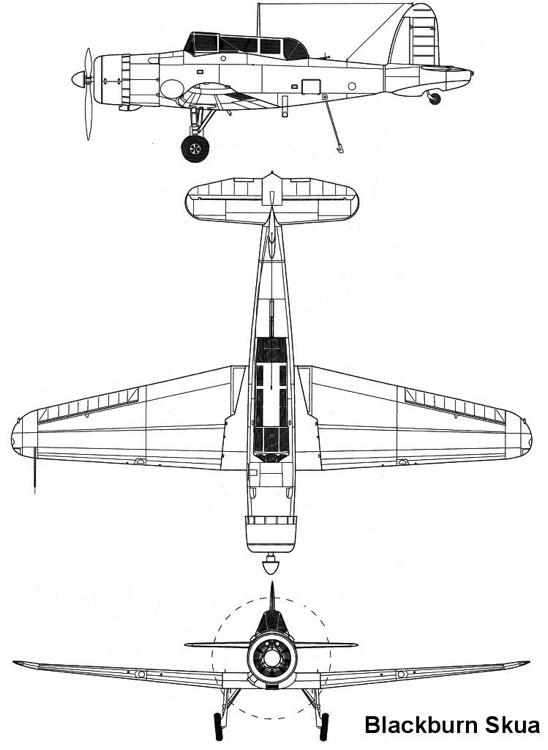 skua 3v model airplane plan